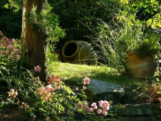 The Best and Easiest Ways to Clean Up Your Garden and Make it Look More Attractive