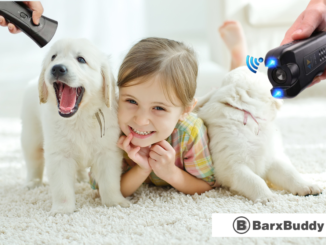 BarxBuddy Product Review: Must Read Before Buying [2020 Exclusive]